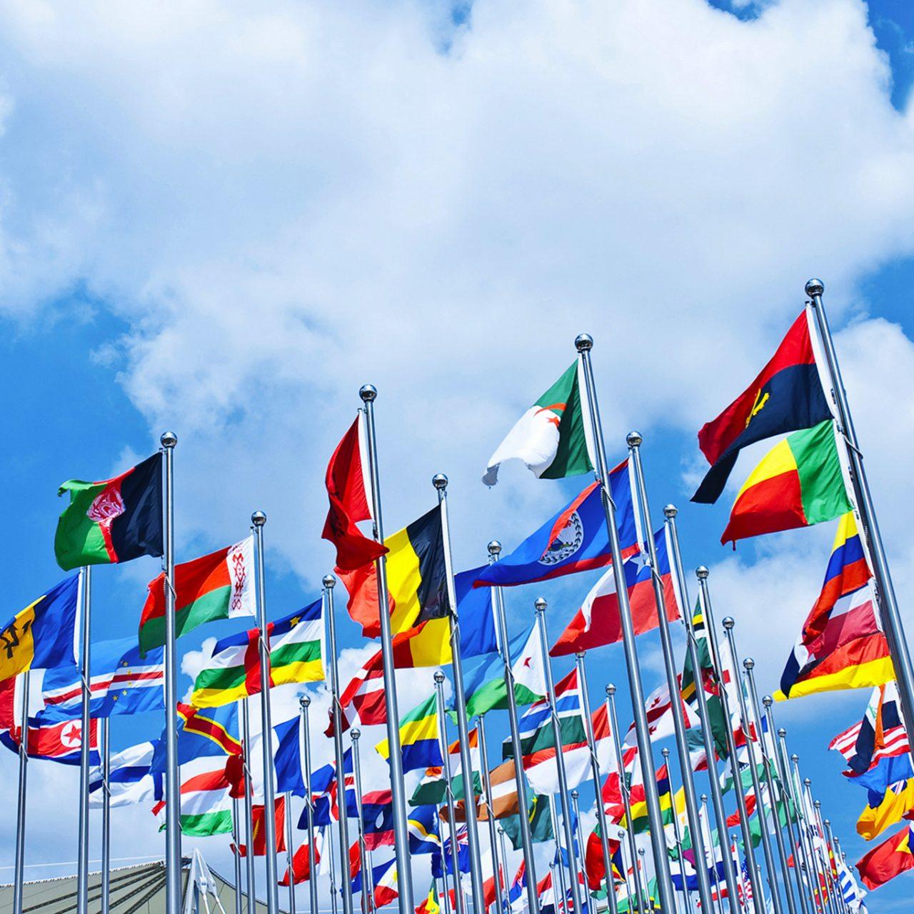 https://kanakaeconomy.com/wp-content/uploads/2021/04/Internationa-Flags-1280x1280.jpg